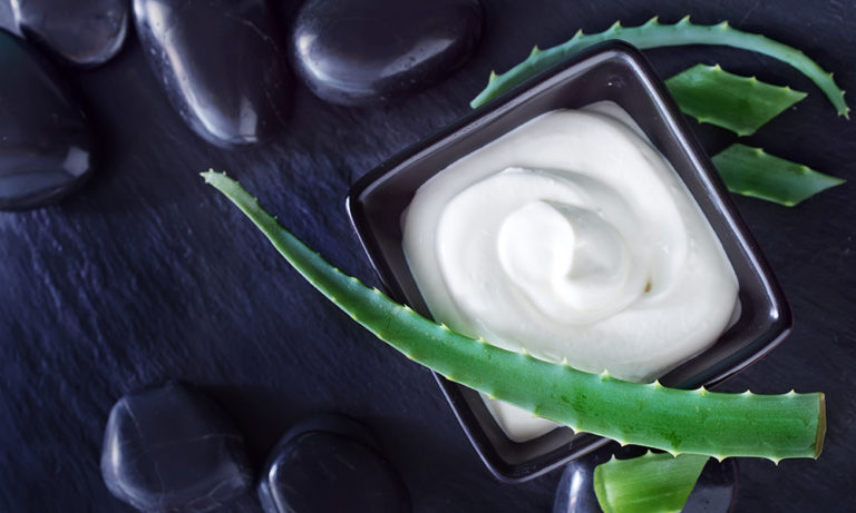 Aloe Vera Medicinal Uses from Skin to Digestion